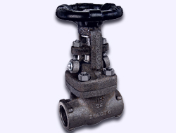 zoloto Forged Steel (A 105) Gate Valve Class-800 (Full Bore)